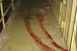 Torture: foto 7
